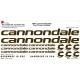 Sticker Kit cadre vélo XXL Cannondale
