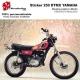 Sticker 250 DTMX Yamaha