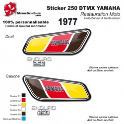 Sticker 250 DTMX Yamaha